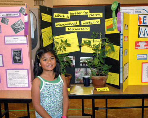 bacteria science fair projects Science fair projects on hand sanitizers or liquid soap for killing bacteria by maggie mccormick updated april 25, 2017.